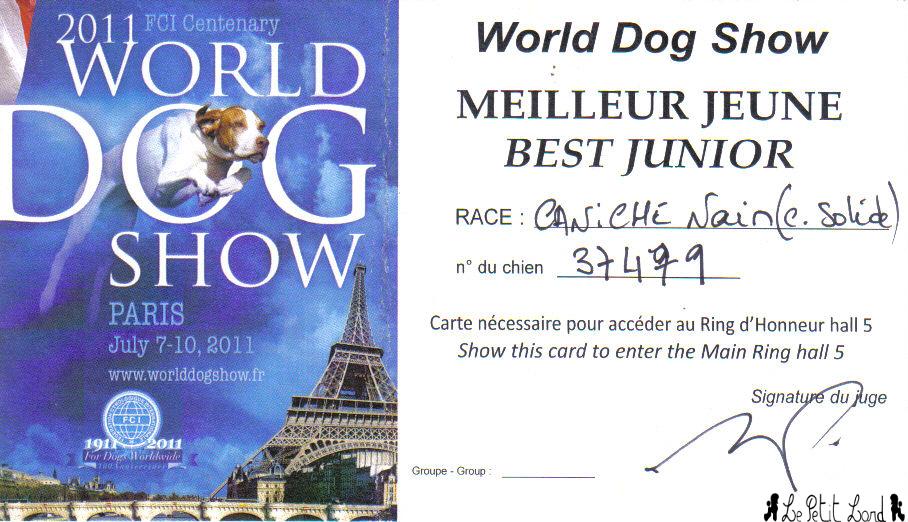 Flamenco - Carton Meilleur Jeune World Dog Show le 10.07.11