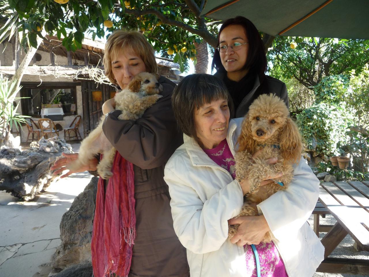 Feeling & Gloria (famille Belgrano)