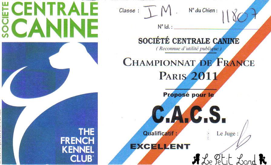 Shadow - Carton CACS Championnat de France Paris 2011